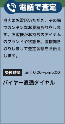 denwa_satei