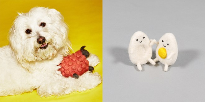 Ware of the dog / wooly toys