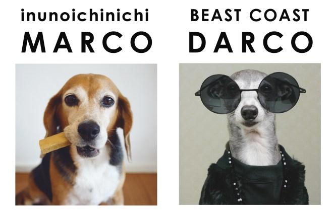 看板犬のマルコとダーコのコラボです。