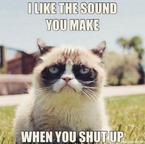 Grumpy cat, talk to my mind!