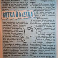 Котка в клетка (разказ)