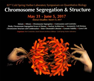 An Eye-catcher for the CSHL Symposium