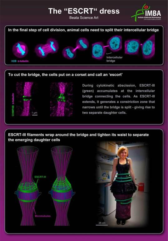 ESCRT Dress Poster