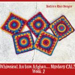 Whimsical Autumn Afghan.. Mystery CAL Week 2!!!