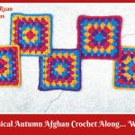 Whimsical Autumn Afghan Crochet Along… Week 4!