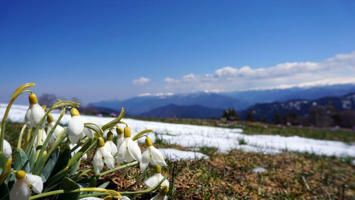 cheap hiking spring