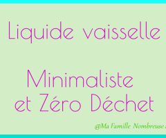 Liquide vaisselle Zéro Déchet et Minimaliste