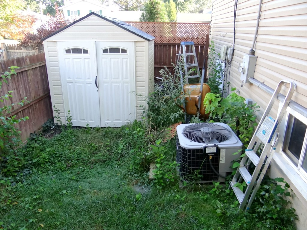 Side Yard Before By Shed