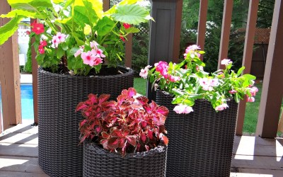 Wicker-Look Planters Perfect for Your Home
