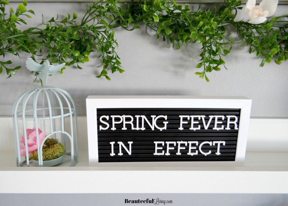Spring Fever Letter Board - Beauteeful Living