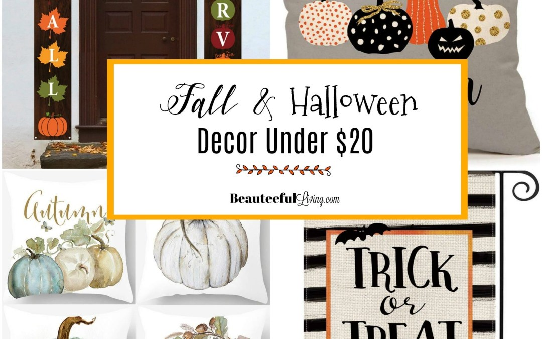 Fall and Halloween Decor Under $20 Dollars
