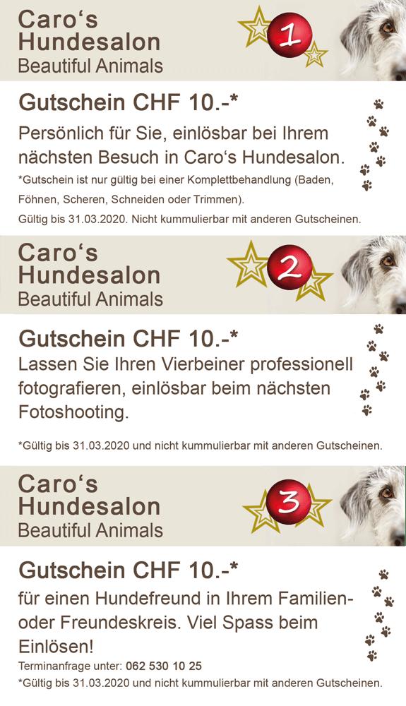 Caro's Hundesalon, Gutscheine
