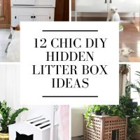 12 Stylish DIY Cat Litter Box Enclosures & Hidden Litter Box Ideas!
