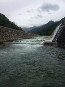 225x300 - 新潟県湯沢町で人気の魚野川渓流釣り