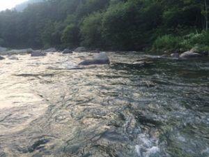 300x225 - 日本三代渓谷の「清津川で渓流釣り」