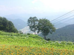 IMG 6616 300x225 - 湯沢高原 夏季シーズン