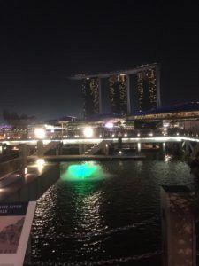 img 0251 225x300 - シンガポールからマレーシアへ