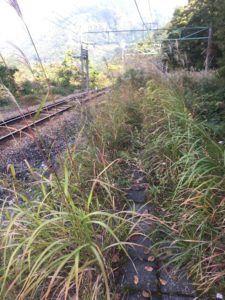 img 4520 225x300 - 関東で最も謎な秘境「旧湯檜曽駅」