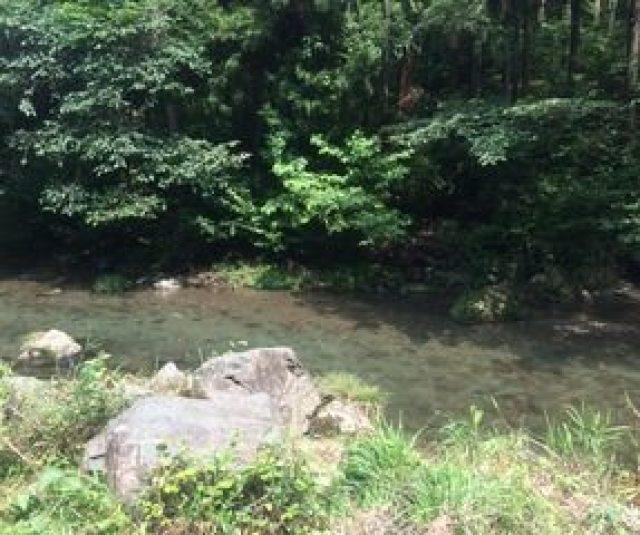287x240 - 都幾川渓流釣りの結果