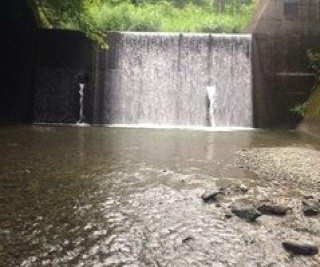 240x200 - 都幾川渓流釣りの結果