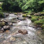 image 56 e1466320320961 - 埼玉県飯能市の名栗川渓流釣り情報