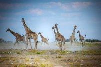 moniquedecaro_namibia-0279