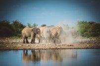 moniquedecaro_namibia-0646