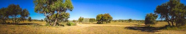 moniquedecaro_namibia-2975