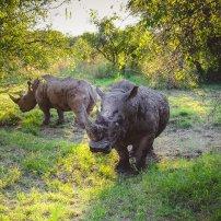 moniquedecaro_namibia-4005