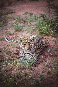 moniquedecaro_namibia-8901