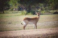 moniquedecaro_namibia-9286