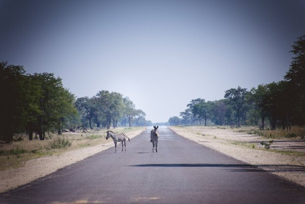 moniquedecaro_namibia-9788
