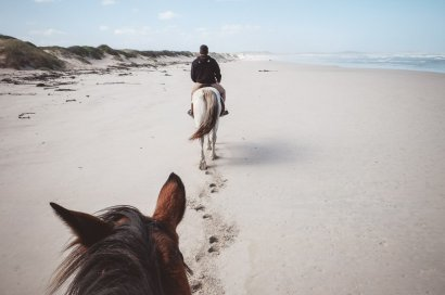 horseriding-south-africa-moniquedecaro