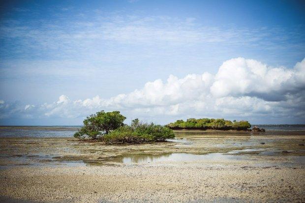 moniquedecaro-kenya-chale-island-014