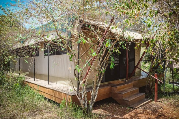 moniquedecaro-mara-bush-camp-kenia-3341