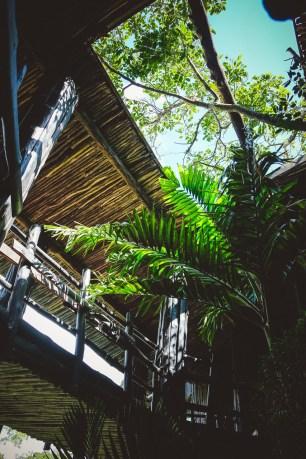 moniquedecaro-shimba-hills-7050