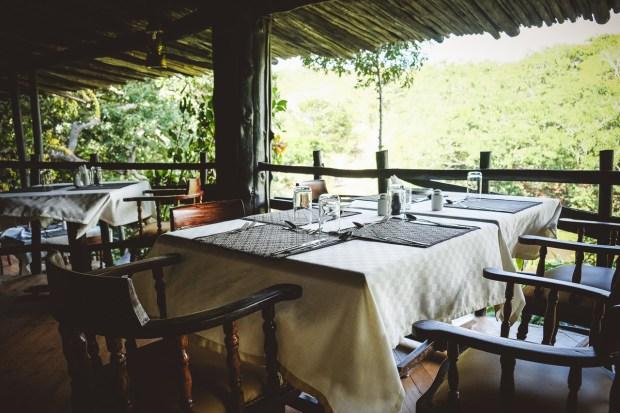 moniquedecaro-shimba-hills-7115