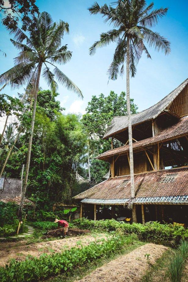 moniquedeacaro-bali-4766-bambu-indah