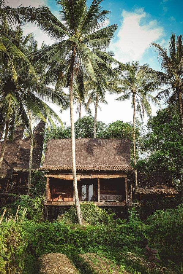 moniquedeacaro-bali-4996-bambu-indah