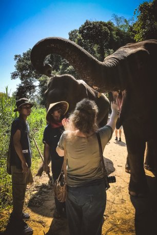 Anantara Golden Triangle Elephant Camp Resort Thailand