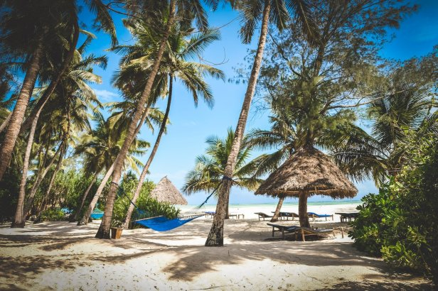 moniquedecaro-9769-pongwe-beach-zanzibar
