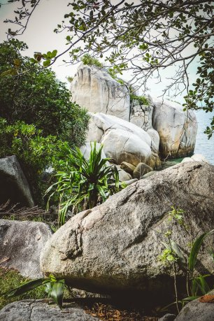 moniquedecaro-nikoi-island-5108