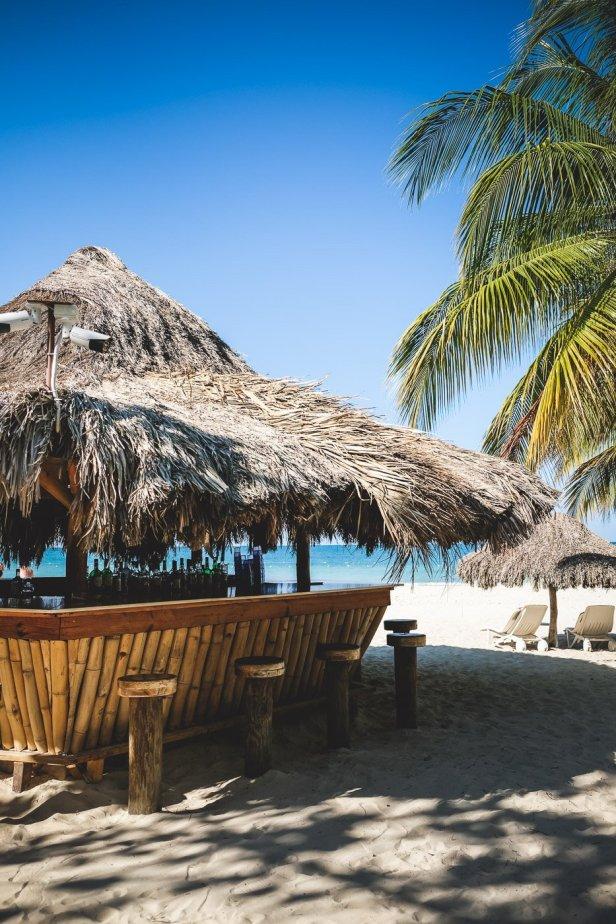 moniquedecaro-jamaica-couples-swept-0574