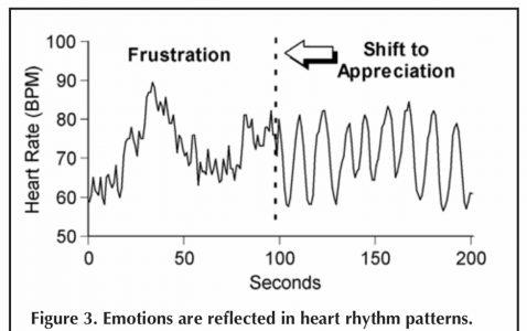 感情による心拍数の波形の変化