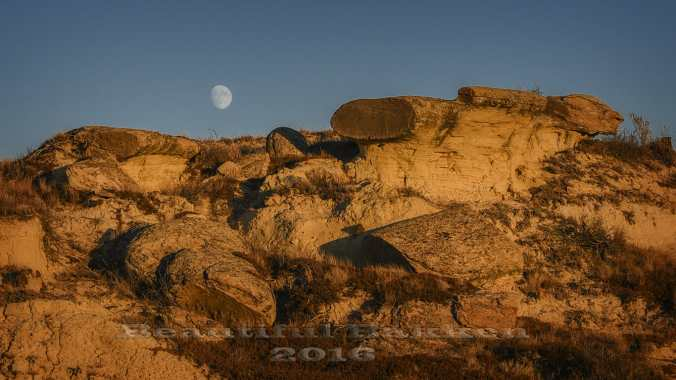 While the sun was still illuminating the golden rocks, a nearly-full moon rose.