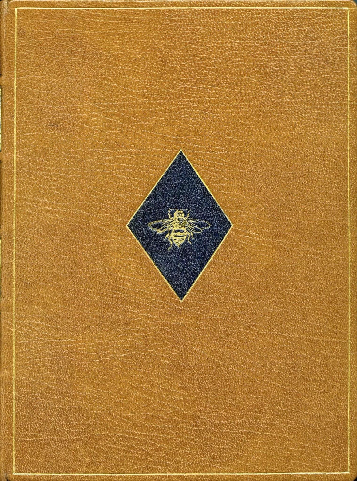 2001 CVS Three Bess cover