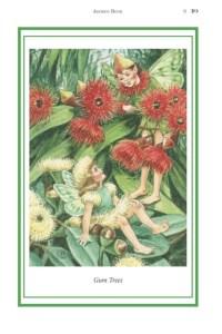 Elizabeth Alger Margaret Thornton Australian Flower Fairies Address Book Gum Tree Fairy