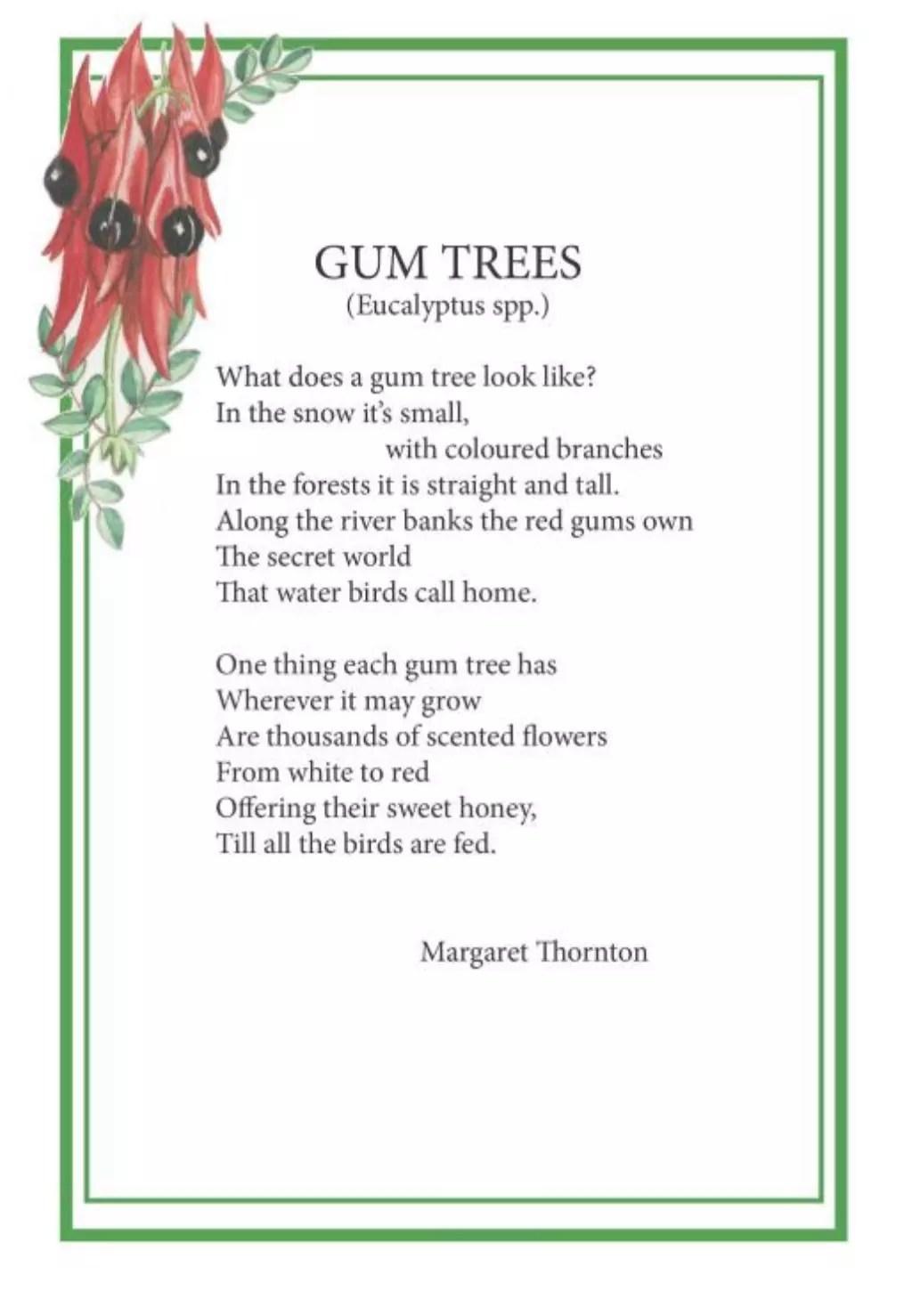 Elizabeth Alger Margaret Thornton Australian Flower Fairies Address Book Gum Tree Poem