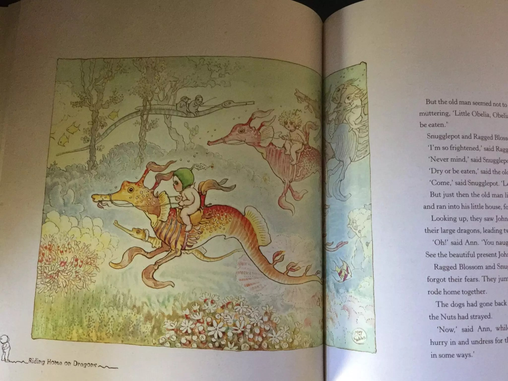 May Gibbs Snugglepot Cuddlepie Riding Home on Dragons