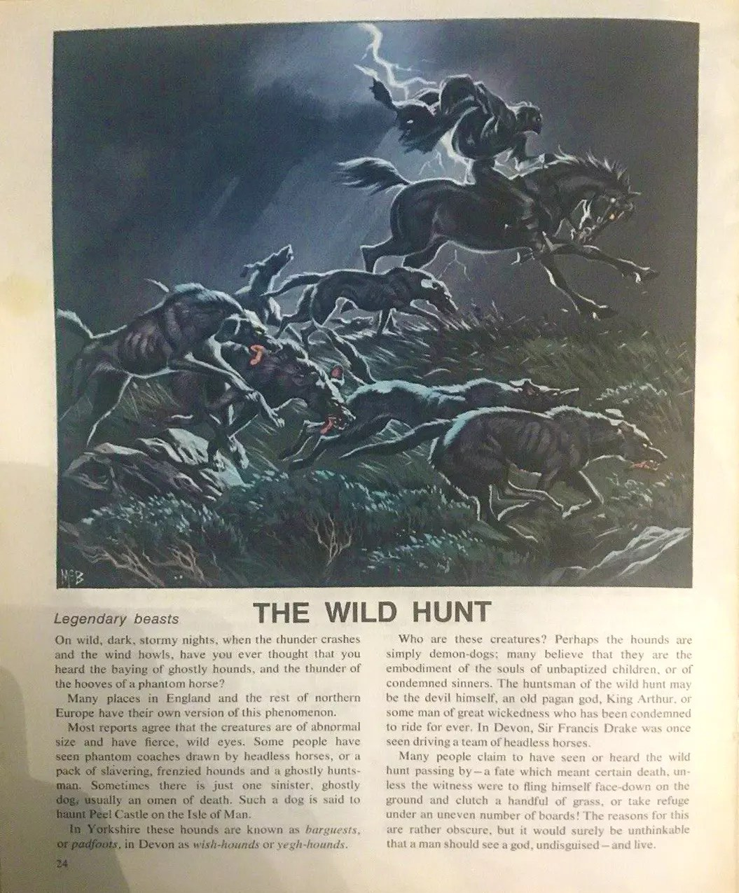 Finding Out 16 8 McBride Beasts Wild Hunt crop